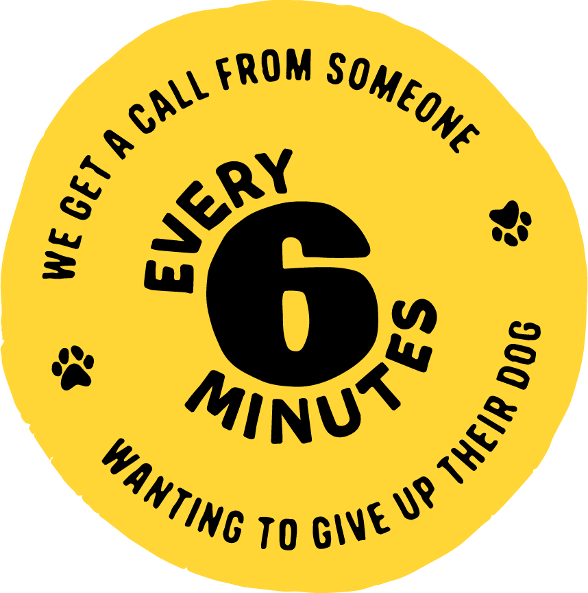 Every 6 minutes we get a call from someone wanting to give up their dog.