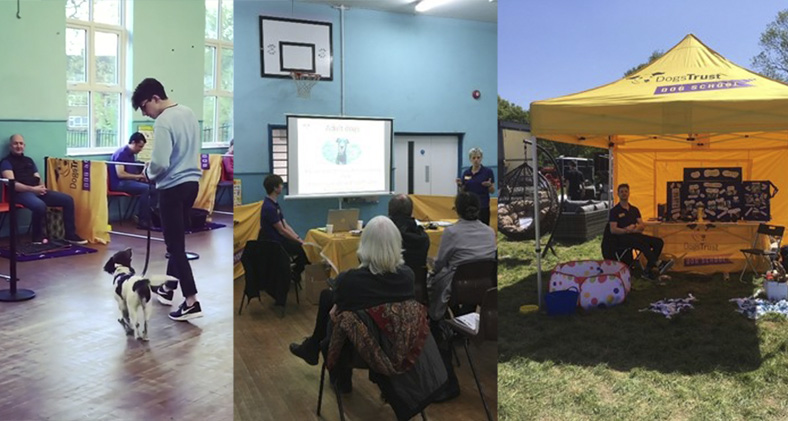 Dog School activities - training, a presentation and an evnt tent