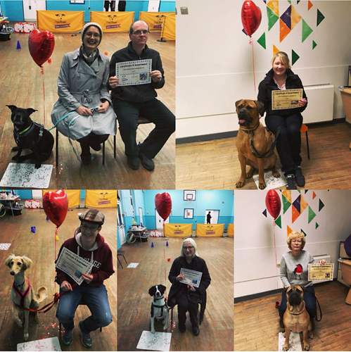Collage of Dog School graduates