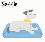 Illustration of dog settling