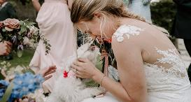 Dog friendly wedding - Jess and Frankie