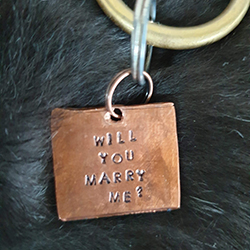 Dog friendly weddings - 'Will you marry me?' dog tag