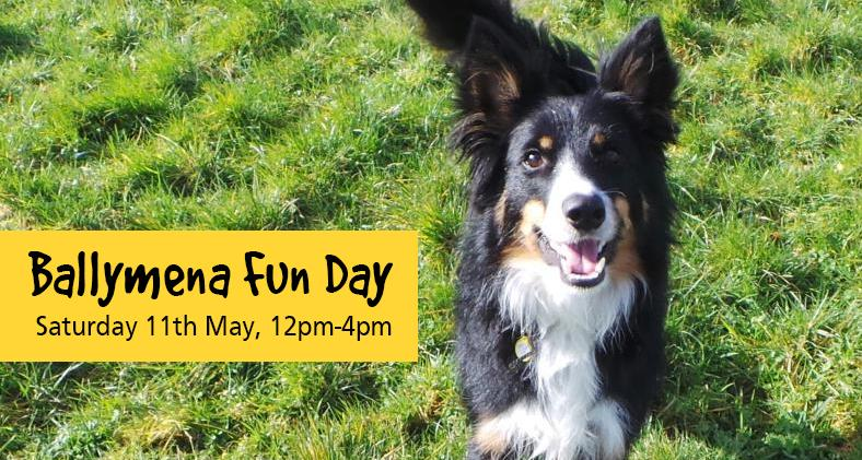 Ballymena Fun Day: Saturday 11th may, 12-4pm