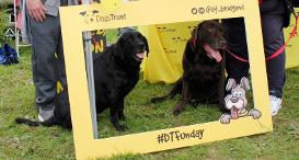 Two Labradors in a Dogs Trust photo frame at Dogs Trust Bridgend's Fun Day.