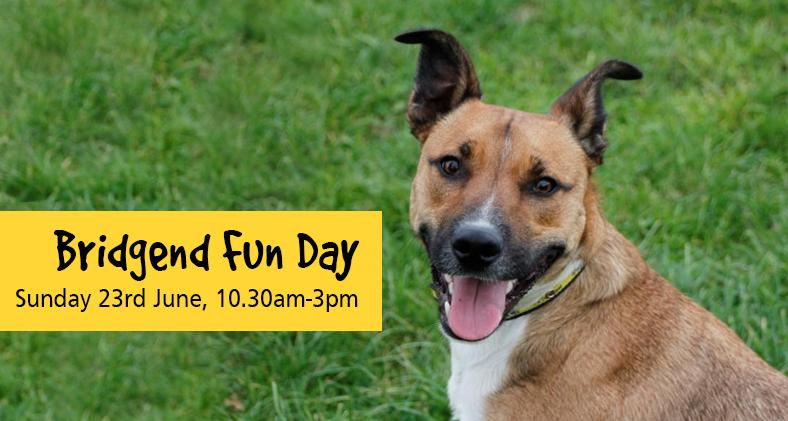 Bridgend Fun Day: Sunday 23rd June 2019, 10.30am to 3.00pm