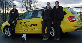 Home from Home Carers in front of Dogs Trust Car