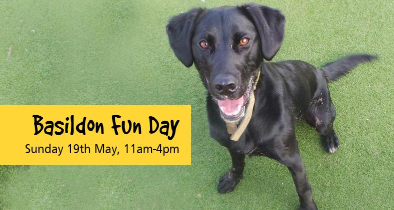 Basildon Fun Day: Sunday 19th May, 11am-4pm