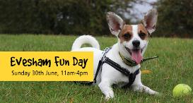 Evesham Fun Day: Sunday 30th June 2019, 11am to 4pm