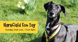 Harefield Fun Day: Sunday 2nd June 2019, 11am - 4pm