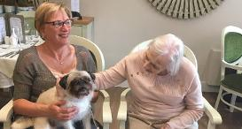Wincey from Dogs Trust Kenilworth at Cubbington Mill Care Home