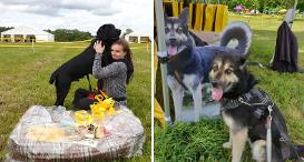 Dogs Trust Kenilworth Fun Day, including Arla and the winner of Best in Show.