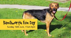 Kenilworth Fun Day: Sunday 16th June 2019, 11am to 4pm