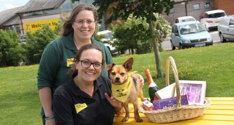 Staff at Dogs Trust Leeds preparing for their Fun Day