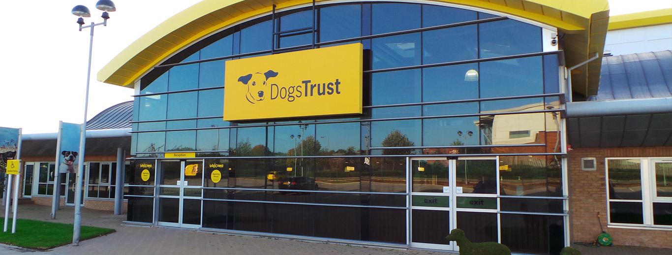 Manchester Dogs Home Jobs
