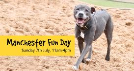 Manchester Fun Day: Sunday 7th July, 11am to 4pm