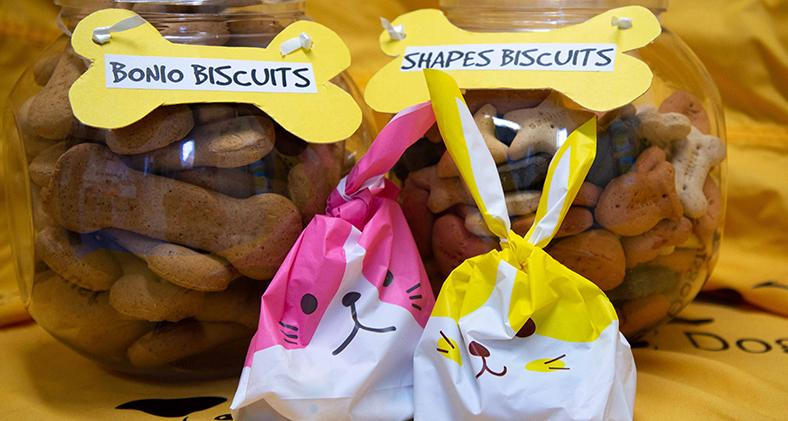 Two jars of dog biscuits with some Easter treats ready for Newbury's Spring Fair