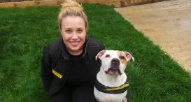 Staff from Dogs Trust Newbury with a canine companion