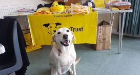 Shannon joining the SROs at Dogs Trust Shoreham.