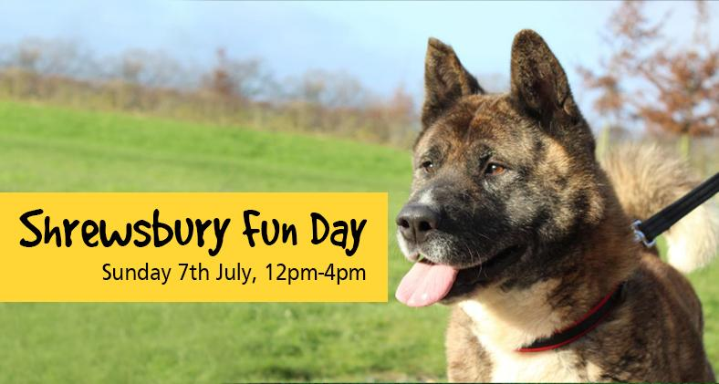 Shrewsbury Fun Day: Sunday 7th July 2019, 12pm-4pm