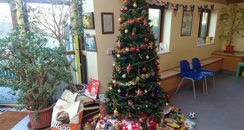 our supporters gave to us a tree load of really cool stuff christmas