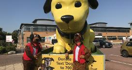 A large yellow dog float