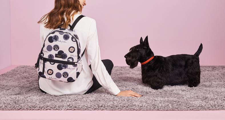 Since We Started Working Together In 2017 The Radley Collaboration Has Raised Over 50 000 For Dogs Trust Through S Of Their Stylish