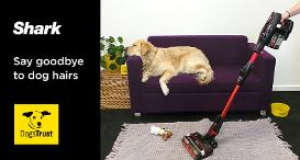 A dog on the sofa whilst a Shark vacuum cleaner is being used